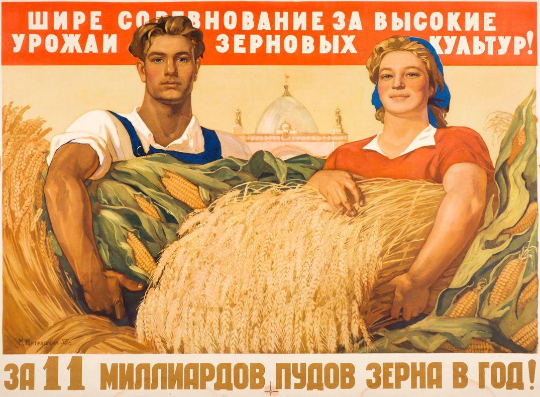 Ткачев пообещал побить советский рекорд урожая зерна